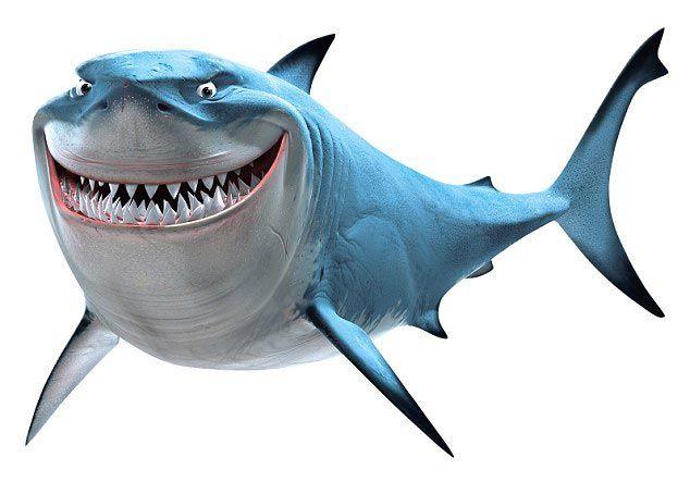 приснилась акула