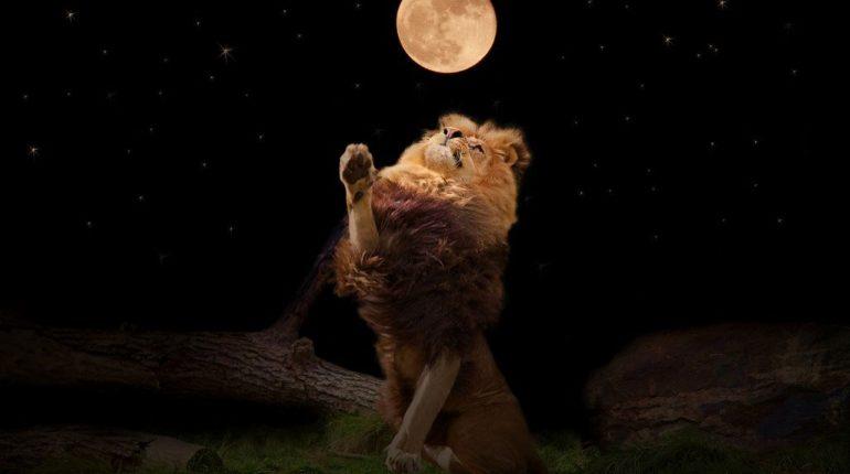 Что значит Селена (Белая Луна) в знаке Льва для мужчин и женщин